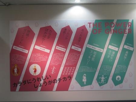 新生姜ミュージアム