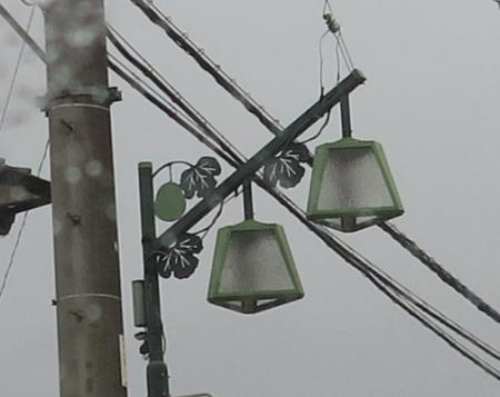 栃木 街灯 ゆうがお