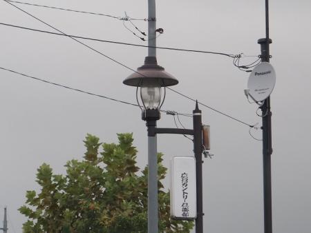 栃木 ランプ型 街灯