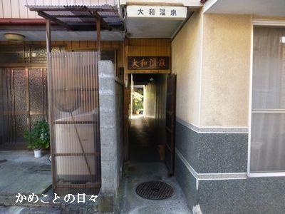 P1250413-y.jpg