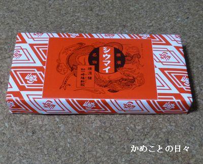 P1250457-s.jpg