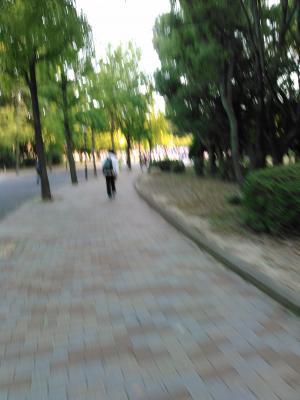 KIMG0708_convert_20151027211311.jpg