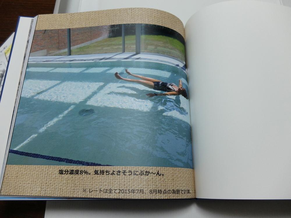 Mybook 11