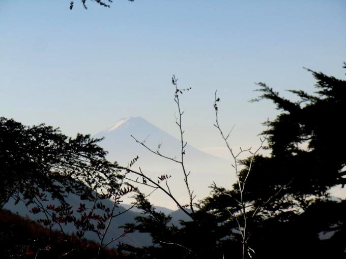 展望岩から富士山が