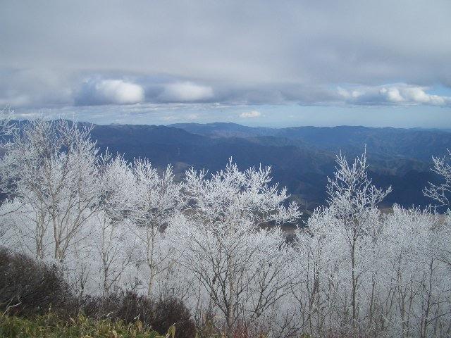 霧氷で真っ白