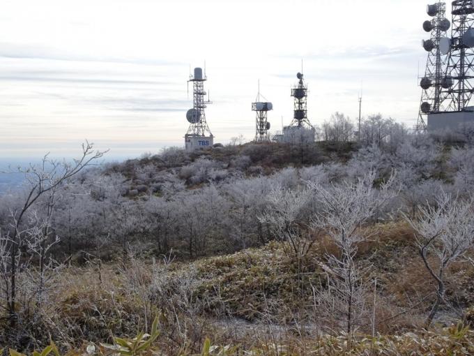 山頂部の霧氷5