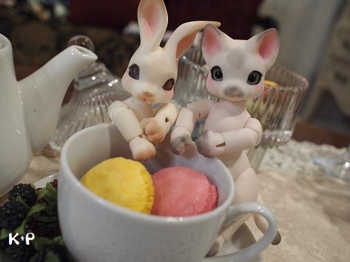 にこ&ニコ