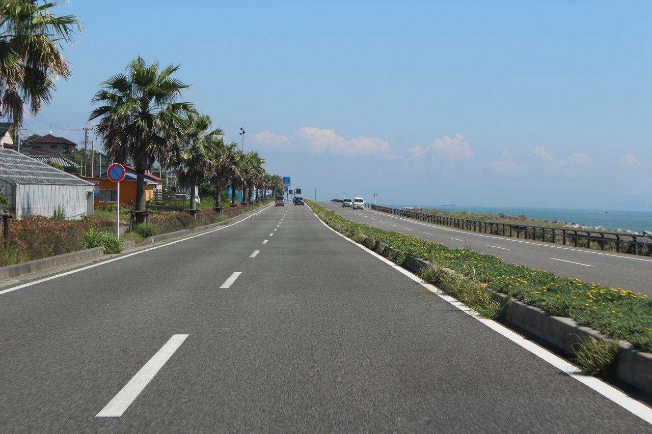 静岡の道路-1