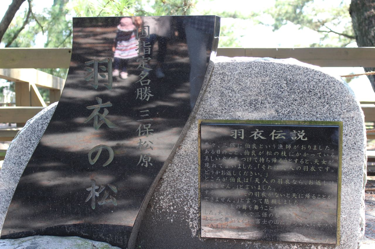 三保の松原-10