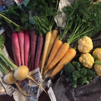 タンジョウ農場野菜