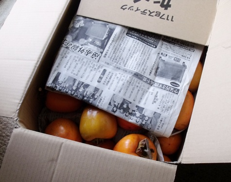 201501103 渋柿が来た! 003-2