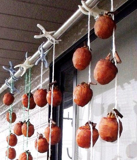 2015120 柿で苦労 056-3