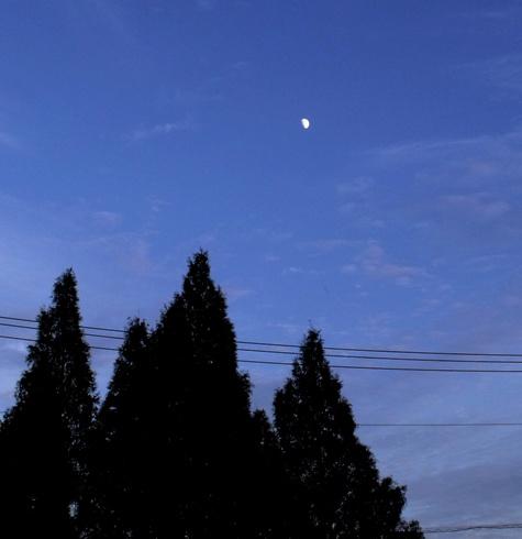 2015121 長柄ダム 164-2