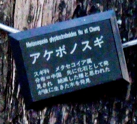 2015121 長柄ダム 220-3