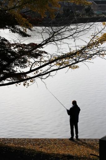 多賀神社前の釣り人