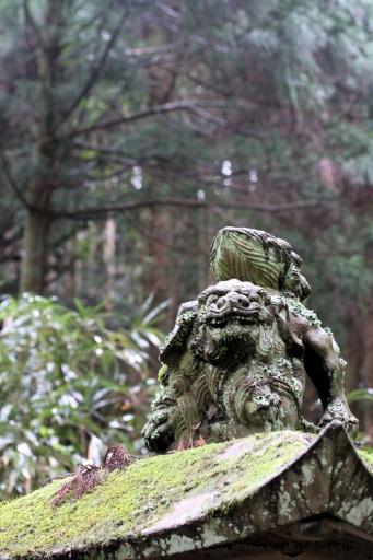 虫野神社の跳び狛