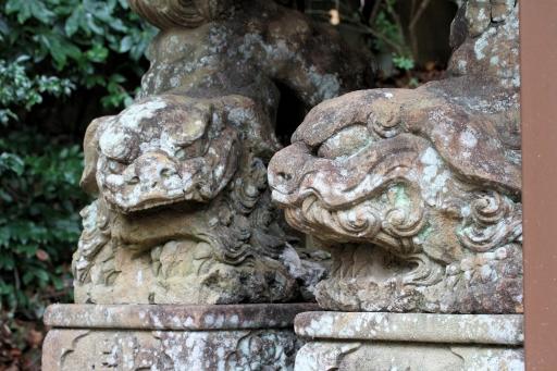 売豆紀神社の引退狛ワンコ