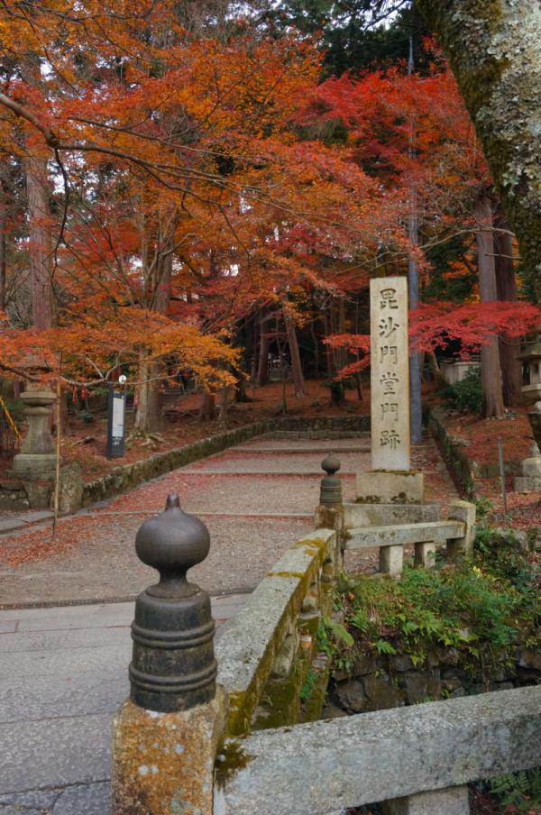 kosei no tabi 2015 09