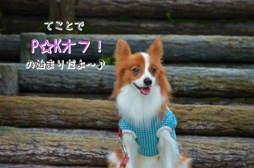 bpz27_El愛知2