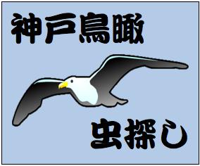 神戸鳥瞰虫さがしワッペン