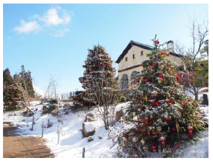 20160626六甲ガーデンテラスのクリスマス