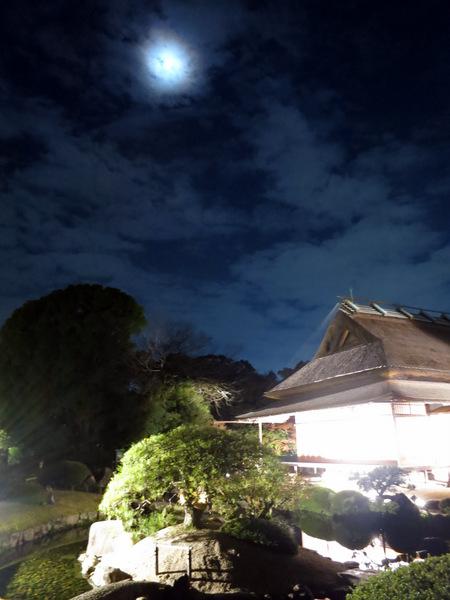 秋の幻想庭園2015⑤