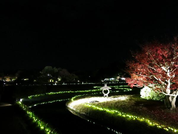 秋の幻想庭園2015⑥