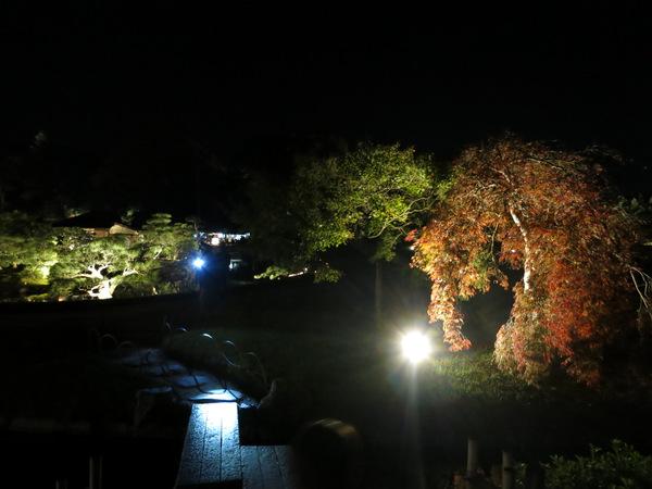 秋の幻想庭園2015⑩