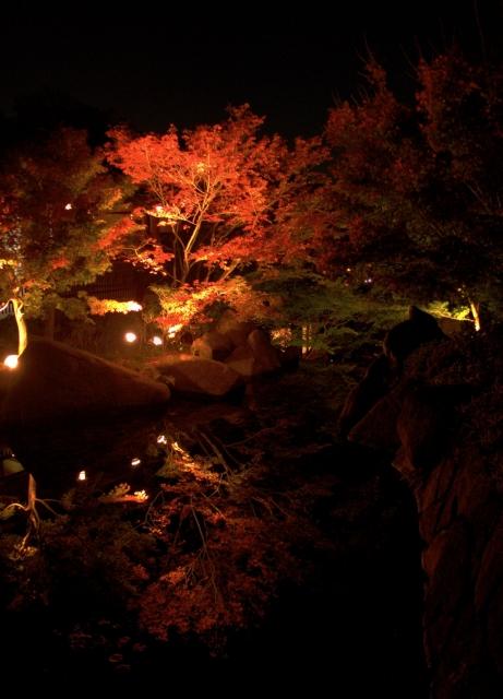 B20151127P_徳川園紅葉e_P1090853