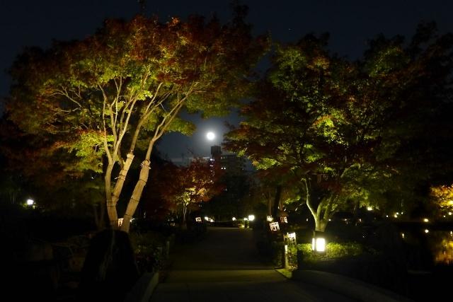 B20151127P_徳川園紅葉_moon_P1090903
