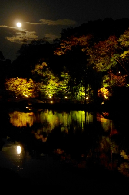B20151127P_徳川園紅葉_moon_P1090888