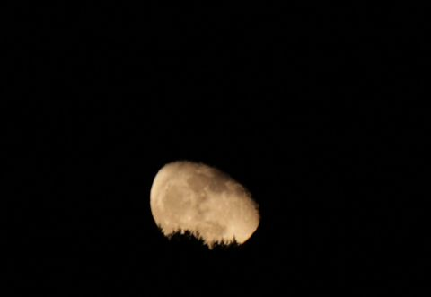 moon_20151031L_IMG_5137.jpg