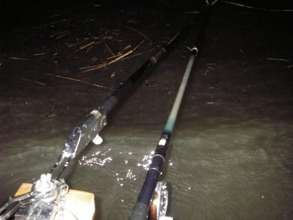 12尺リールミャク強風の釣り