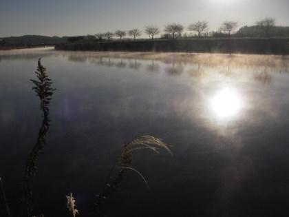 朝モヤの印旛新川