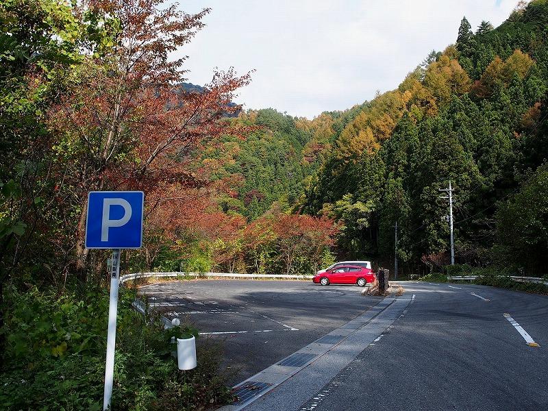 PA310027(1).jpg