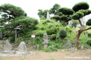 産財氷川神社(志木市中宗岡)11