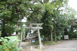 下ノ氷川神社(志木市下宗岡)1