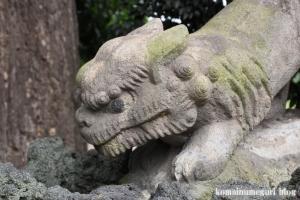 下ノ氷川神社(志木市下宗岡)30