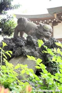 下ノ氷川神社(志木市下宗岡)25