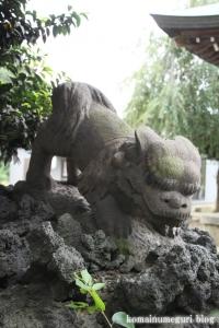下ノ氷川神社(志木市下宗岡)26