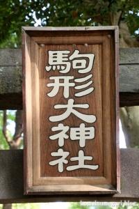 駒形大神宮(市川市大野町)10