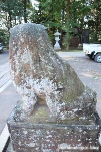 駒形大神宮(市川市大野町)37