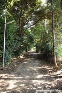 子安大神社(市川市柏井町)3
