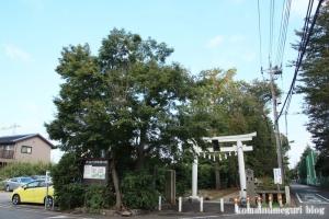 岡氷川神社(朝霞市岡)1