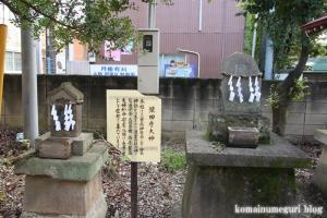 岡氷川神社(朝霞市岡)15