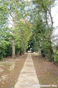 岡氷川神社(朝霞市岡)5