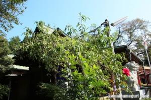 氷川八幡神社(和光市新倉)18