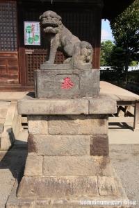 溝沼氷川神社(朝霞市本町)14