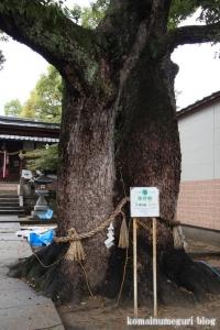 大宮神社(鶴見区茨田大宮)5