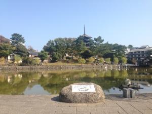 sarusawa1023_convert_20151023115350.jpg